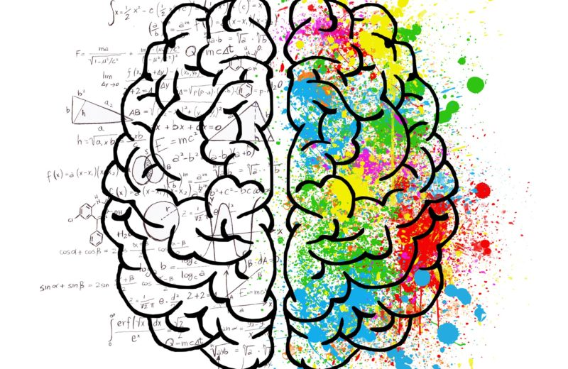 brain_restoalsud
