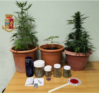 sequestro marijuana messina