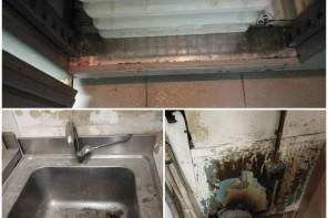 Problemi di igiene. Maxi multe e controlli nella zona Nord di Messina