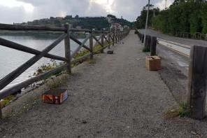 Fuochi d'artificio e botti a Messina: Sanò chiede un'ordinanza per limitarne l'utilizzo
