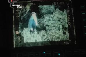 Era scomparso mentre cercava funghi nei boschi. Ritrovato 86enne disperso