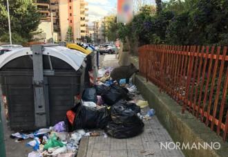 Foto dei cinghiali in mezzo ai cassonetti colmi di immondizia, rifiuti Messina