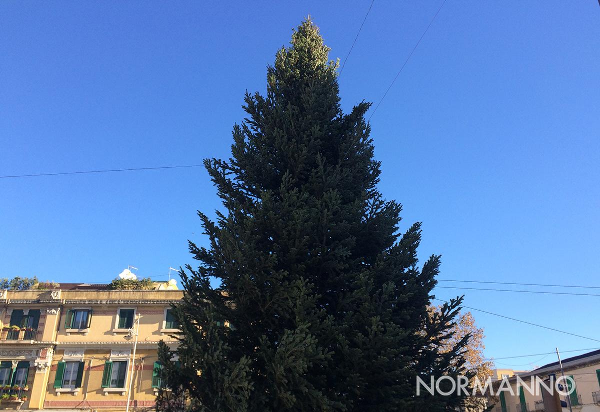 foto dell'albero di natale di piazza cairoli ancora da addobbare, messina
