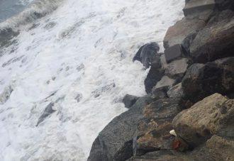 erosione costiera messina
