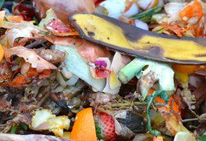 compostaggio frutta e verdura