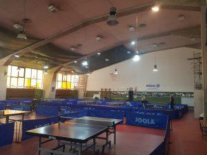 ping pong villa dante