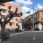 potatura alberi piazza casa pia