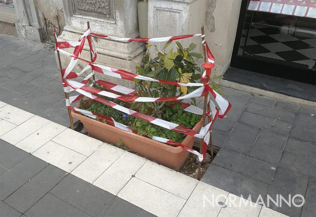 vaso di fiori in una buca nel marciapiede di palazzo dei leoni a messina