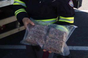 Sequestrati 500 kg di prodotti avariati al Porto di Milazzo