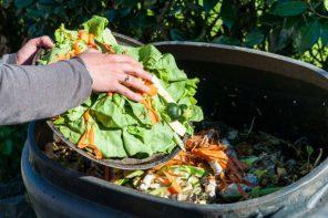 Messina diventa più ecologica: al via il compostaggio domestico dei rifiuti