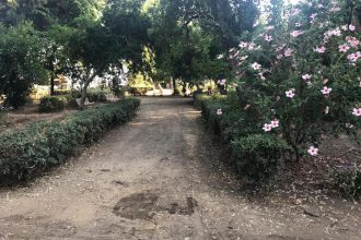 riapertura villa sabin – cateno de luca