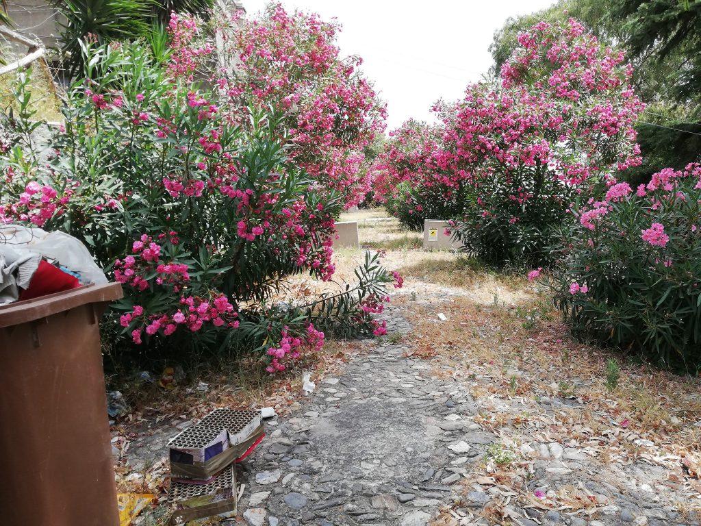 giardino di montalto