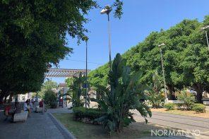 Da piazza Cairoli a villa Sabin: l'idea per trasformare Messina in una città giardino