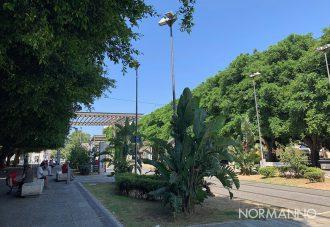 foto del capolinea del tram di piazza cairoli