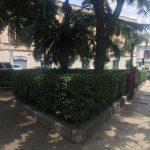 foto post pulizia da parte di messinaservizi di piazza fulci, via garibaldi, messina