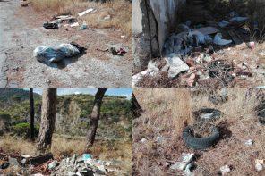 La Pineta di Calamona abbandonata al degrado: l'appello per salvarla