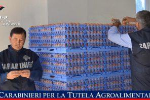 Aziende messinesi nel mirino dei Carabinieri: maxi sequestro di uova