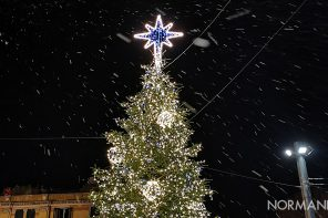 Acceso l'albero di piazza Cairoli: Messina si illumina per il Natale 2019 – FOTO e VIDEO