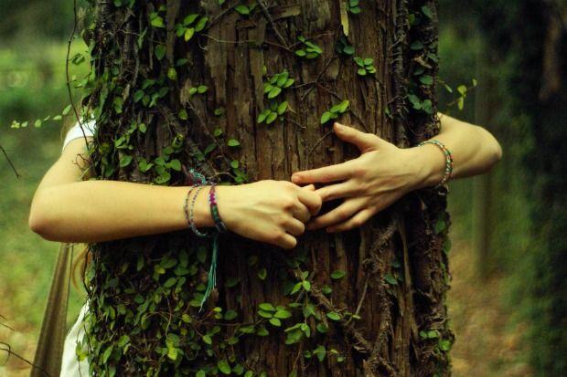 ragazza che abbraccia un albero