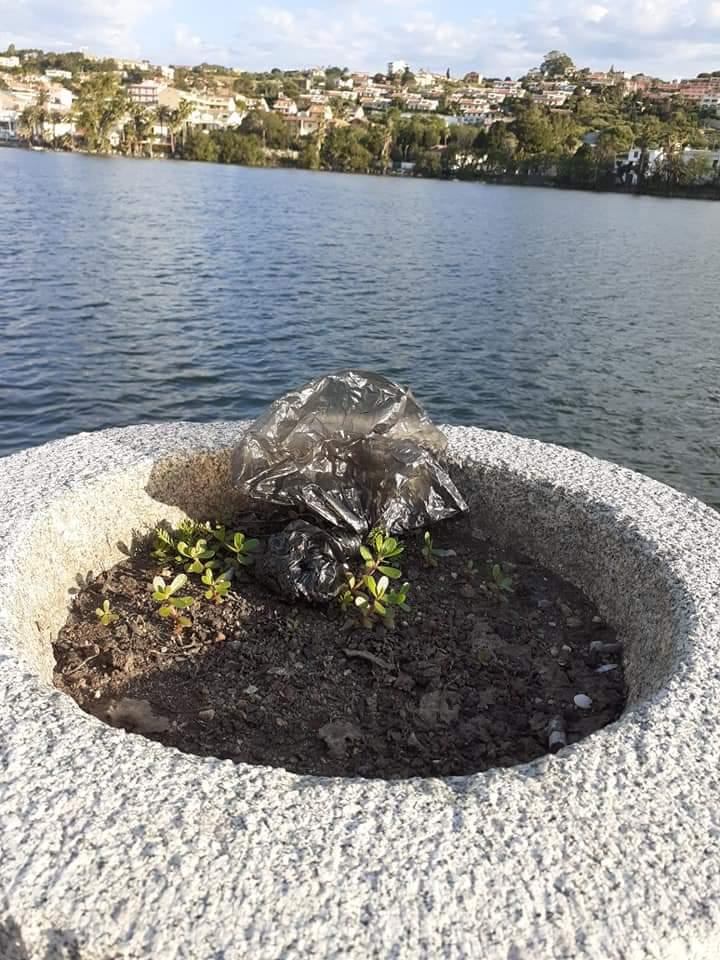 degrado a ganzirri: sacchetti contenenti defezioni canine abbandonati sul lungolago di Messina, per terra e nelle fioriere