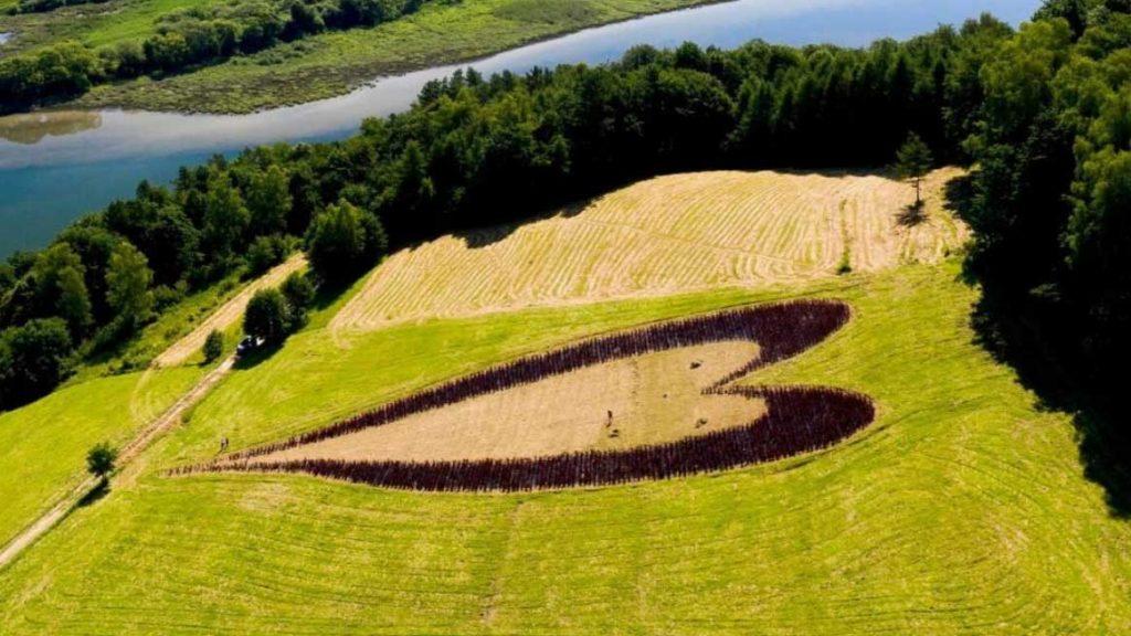 belle notizie da messina e dal mondo ai tempi del coronavirus: un uomo crea un cuore di arbusti nell'erba per ricordare la moglie deceduta