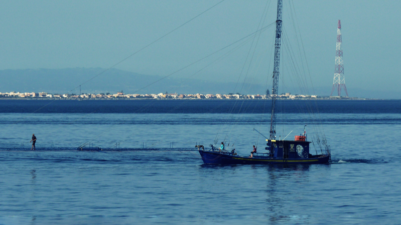 feluca a torre faro nello stretto di messina (foto © pro loco capo peloro)
