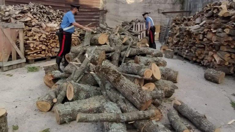 arresto per tentato furto di legna al parco dei nebrodi