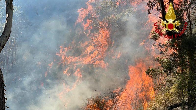 incendio a messina nella zona di salice