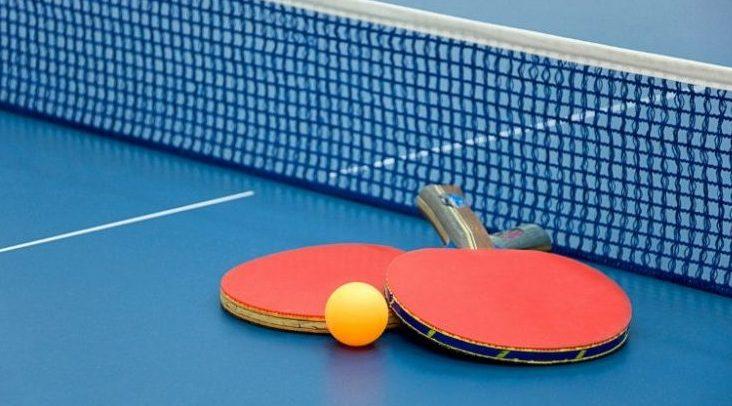 foto di due racchette da ping pong sul campo di tennis tavolo