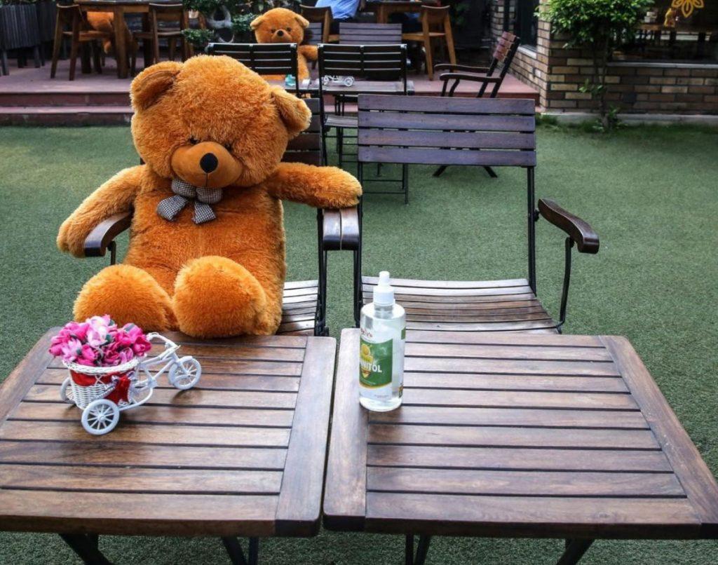 belle notizie: a New Dehli il distanziamento sociale si fa rispettare con gli orsetti di peluche