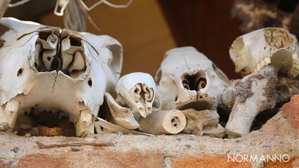 villaggio fantasma di massa san nicola, visita con le vie dei tesori 2020 di messina