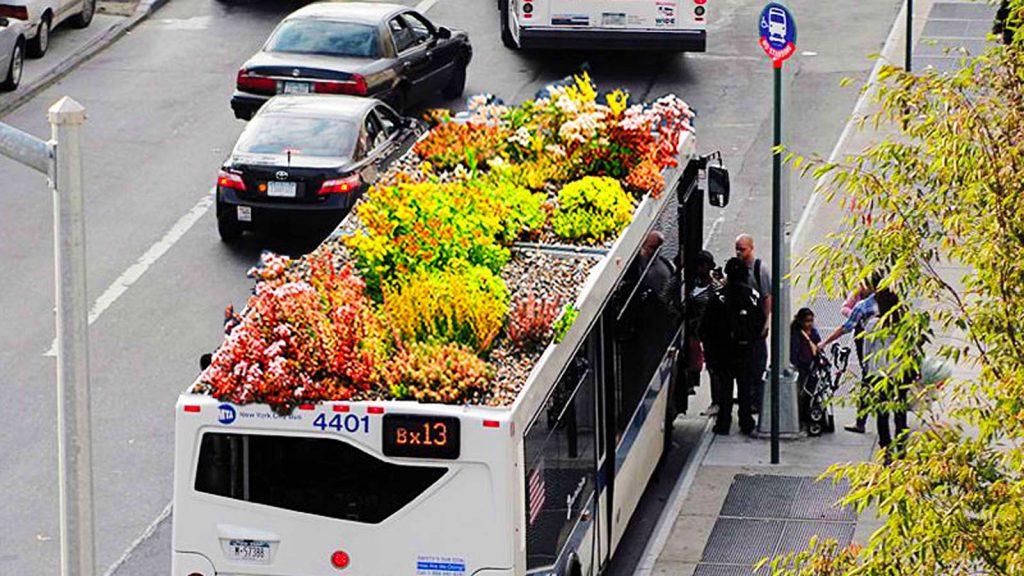 quattro idee per messina: giardini sui tetti dei bus