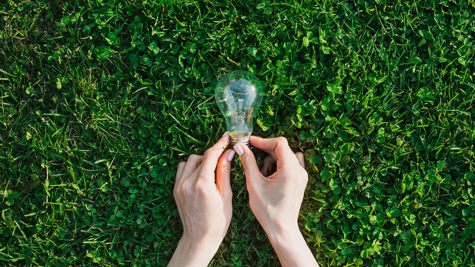 foto di una lampadina sull'erba simboleggiante le idee sostenibili