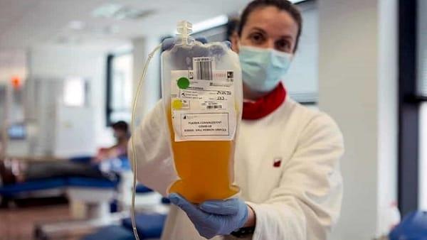 plasma iperimmune covid