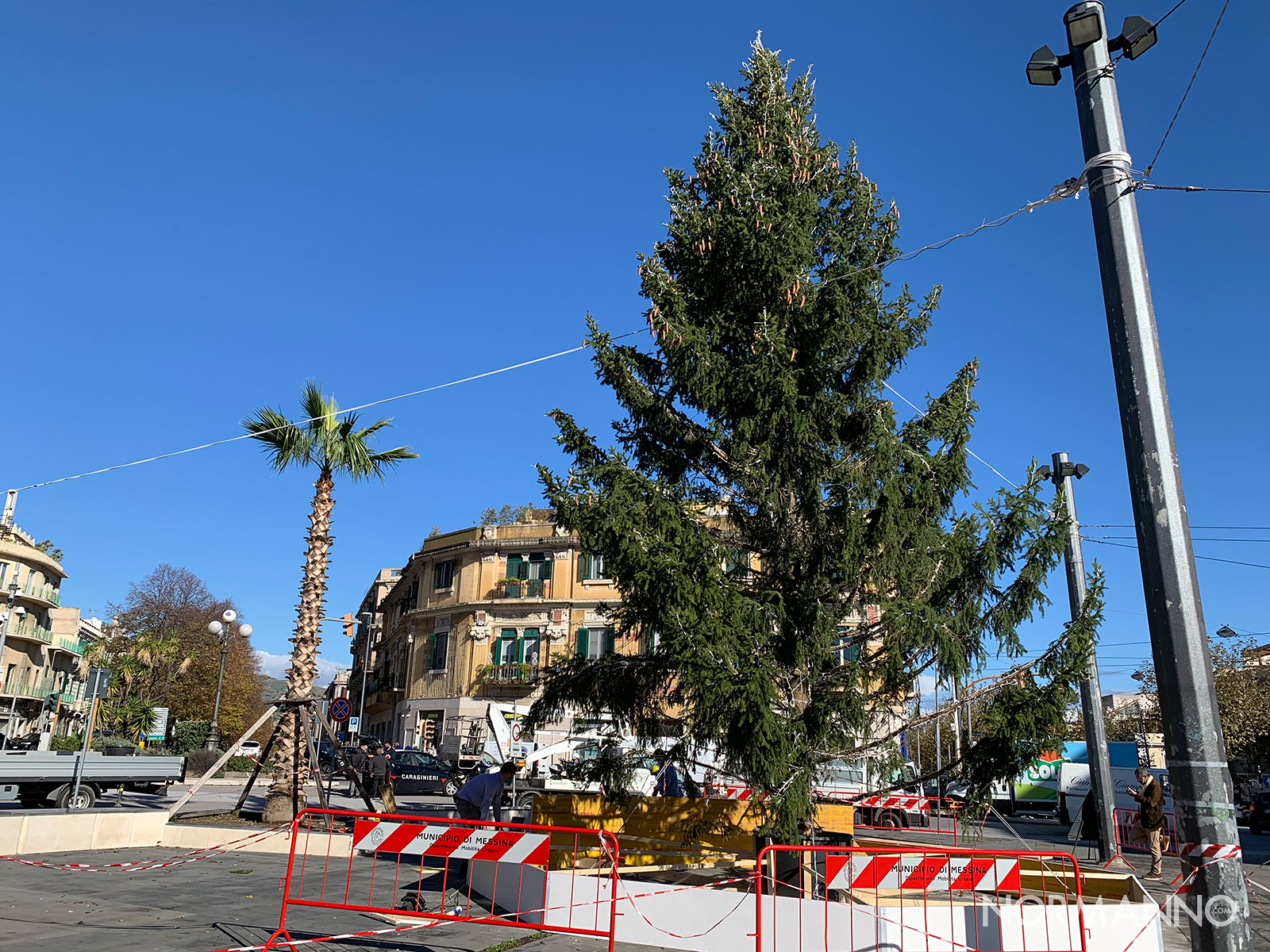 natale a messina, allestimento a piazza cairoli: albero
