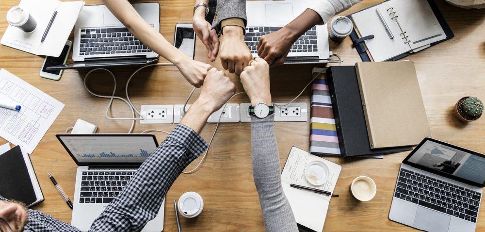 tirocini, lavoro, impresa, azienda, startup, digitale
