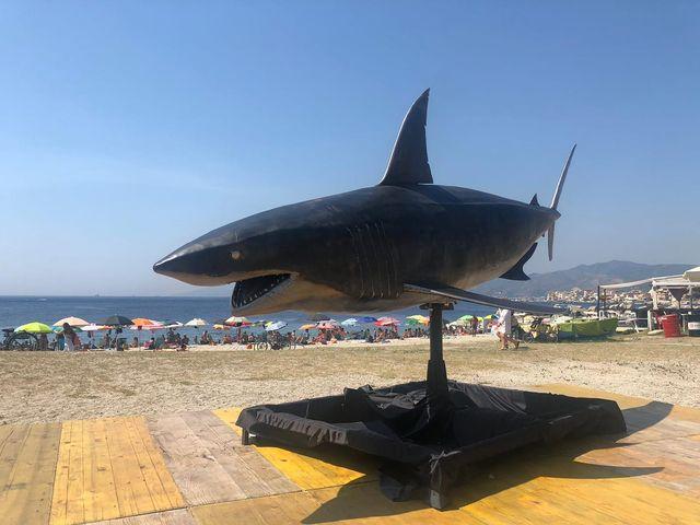 pasqualina, squalo protettore di capo peloro fatto da fabio pilato