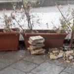 degrado e sporcizia nel centro storico di messina